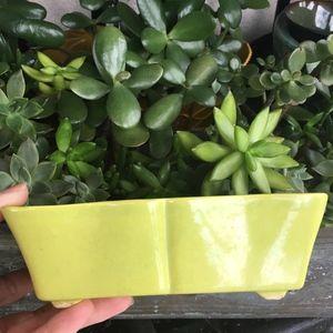 Vintage Ceramic Planter Signed Home Decor Garden
